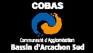 logo-vertical-cobas