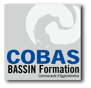 Logo BASSIN Formation