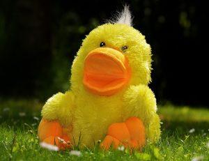 Peluche canard jaune dans l'herbe