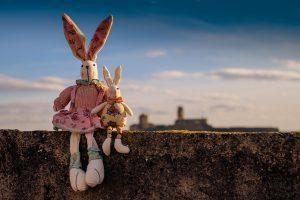 Peluches lapins sur un muret