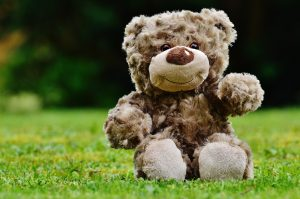 Peluche ours dans l'herbe